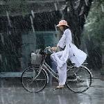 Nhớ mưa xứ Huế