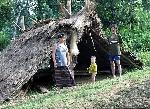 Một đời người một rừng cây