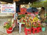 Sinh viên Huế xuống đường bán hoa làm từ thiện.