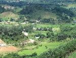 Chính sách mới về cải tạo rừng nghèo kiệt: Cơ hội giải quyết vấn đề đất sản xuất cho đồng bào miền núi