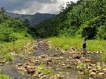 Bắt giữ đối tượng săn bắn động vật rừng trái phép trên đất Lào