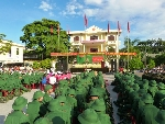 Ngày hội giao quân: 253 thanh niên lên đường