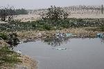 Khốn khổ vì rác thải
