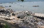 Nuôi hàu làm ô nhiễm vịnh Lăng Cô