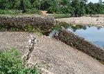 Thừa Thiên - Huế: Thủy lợi tiền tỷ hư hỏng, hàng trăm ha lúa phải bỏ hoang