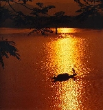 Để Sông Hương trở thành di sản nhân loại