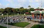 Gần 300 bạn trẻ nhảy flashmob chào mừng festival nghề truyền thống Huế.