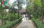 Thừa Thiên Huế: Loay hoay bảo tồn di sản nhà vườn Huế