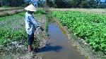 Dự án nước thải chờ… vốn