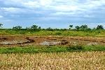 Phát hiện nhiều hiện vật cổ hàng nghìn năm trong khu vực Thành nhà Hồ