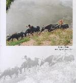 Thơ Sông Hương 06-16