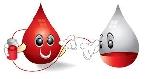 TP Huế: Tổng kết công tác Hiến máu tình nguyện và Hội chữ thập đỏ năm 2016  2017.