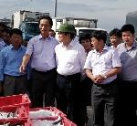 Nguyên Chủ tịch nước Trương Tấn Sang thăm Cảng Cá Thừa Thiên Huế.