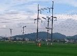 Phú Lộc: Triển khai tiểu Dự án giảm cường độ phát thải trong cung cấp năng lượng điện
