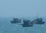 Phú Vang được hỗ trợ 4,758 tỷ đồng khai thác, nuôi trồng  hải sản trên các vùng biển xa