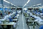 Đầu tư Dự án Nhà máy may xuất khẩu Triệu Phú tại huyện Quảng Điền