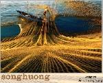 Thơ Sông Hương SDB 12-2017