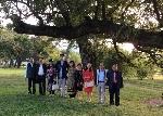Những cầu nối cho văn học Việt