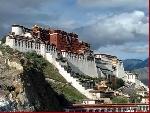 Lhasa vẫy gọi