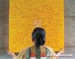 Các tác phẩm TEXTURE của họa sỹ Đinh Khắc Thịnh