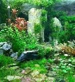 Thơ Sông Hương 06-2004