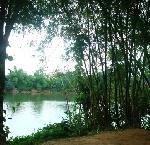 Thơ Sông Hương 10-2004