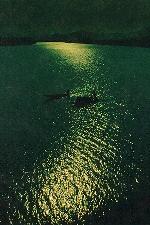 Thơ Sông Hương 11-2004