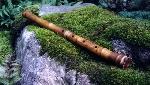 Người thổi sáo và cây sáo cũ
