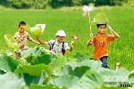 Thơ Sông Hương 06-2000