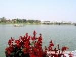 Thơ Sông Hương 01-2011