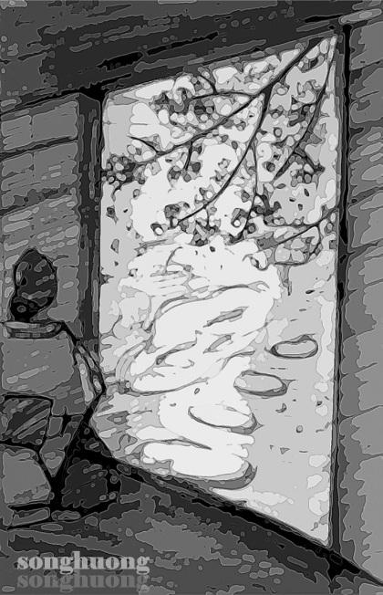 Hoa anh đào bay trong gió...