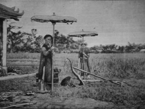 Ruộng tịch điền và vị vua khởi xướng dưới triều Nguyễn