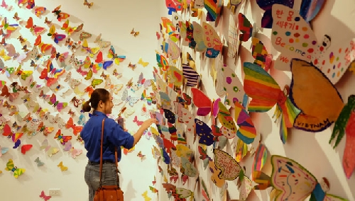 Những cánh bướm kết nối trái tim