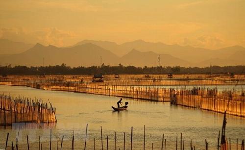 Công bố thành lập khu bảo tồn đất ngập nước Tam Giang – Cầu Hai,
