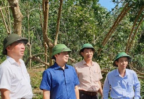 Bí thư Tỉnh ủy Lê Trường Lưu kiểm tra công tác khắc phục hậu quả bão số 9 tại Nam Đông